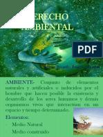Derecho Ambiental Nacional Inter
