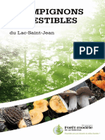 Guide des champignons comestibles du Lac-Saint-Jean_version 2.pdf