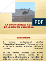 3. exposic. biodiversidad