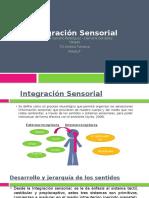 Integración Sensorial.pptx