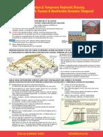 Ejemplos de Estructura