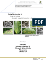 Royadelcafeto.Hemileiavastatrix(Berkeley&Broome).FichatécnicaNo.40.pdf