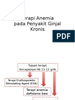 Terapi Anemia