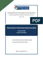 Professor/Professor Bibliotecário