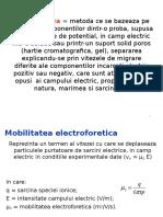 Electroforeza Capilara Suport Curs