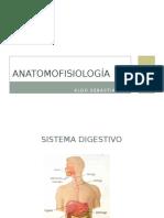 Clase Digestivo