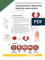 folleto RCP