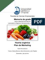 Plan de Marketing para Huerta Orgánica
