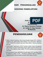 Presentasi Laporan Manajemen ISPA