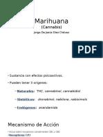 Marihuana Farmacologia