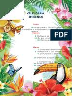 Calendario Ambiental 2017