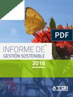 Informe sostenibilidad 2016