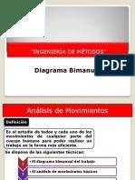 diagrama bimanualPPT