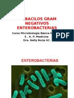 3 - Clase Enterobacterias.eap Medicina.2016.28 Abril
