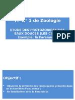 TP1_Paramécie