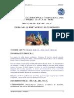 FICHA_NEGROS_DE_HABLA_INGLESA.pdf.pdf
