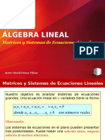 Álgebra Lineal 2012