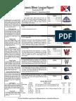 5.30.17 Minor League Report