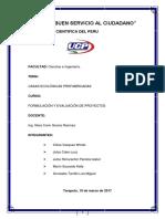 Formulación Final PDF Kelly