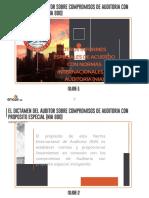 El Dictamen Del Auditor Sobre Compromisos de Auditoria Con Proposito Especial (Nia 800)