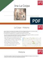 Mina La Coipa.pptx