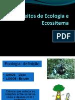 conceitos_ecologia_ecossistema
