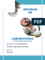 2do Informe de Laboratorio