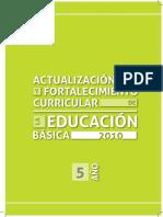 AC 5° GRADO.pdf