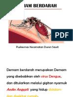 Penyuluhan Dbd Pkc Duwit