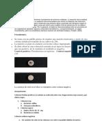 PRUEBA OXIDASA.docx