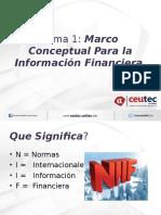 Tema 1 Marco Conceptual Para La Información Financiera