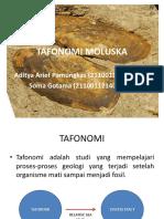 TAFONOMI MOLUSKA.pptx