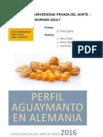 AGUAYMANTO - PERFIL -.docx
