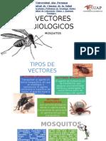 VECTORES-BIOLOGICOS