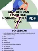 2- Anatomi Dan Fisiologi Kanak2