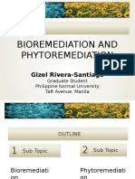Bioremediation and Phytoremediation