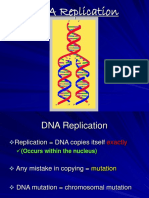 DNA Replication (2)