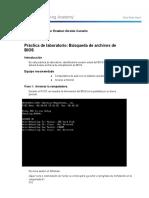 3.3.1.6Lab-BIOSFileSearch.docx