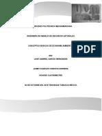 conceptos basicos economia ambiental.docx