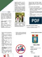 Triptico BULLYING.doc