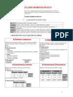 resumen-anc3a1liasis-morfolc3b3gico2.pdf