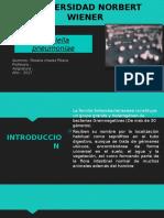 micro- fundamento.pptx