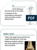 Ankle Power Point