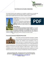 Modelo Agroindustrial HiguerillaEnergia