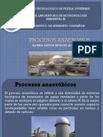 Procesos anaeróbicos