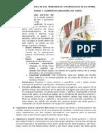 Correderas y Sinoviales de Los Tendones de Los Músculos de La Pierna