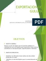 Exportacion de Gulupa
