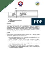 Informe de Chorizo Parrillero