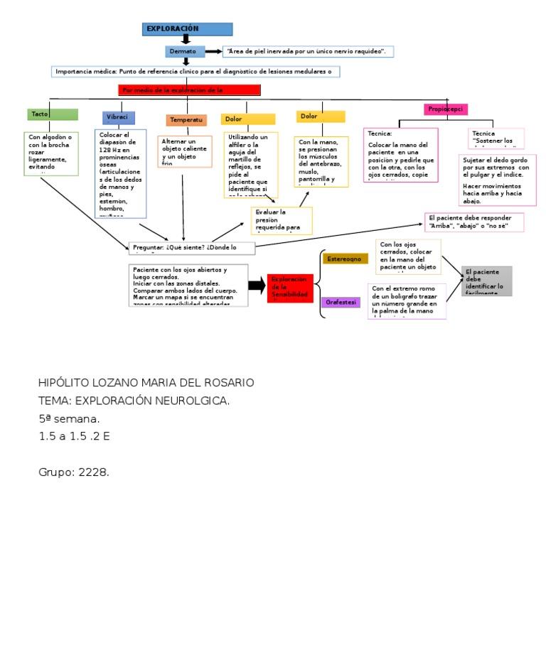 Hipólito Lozano María Del Rosario Exploración (Dermatomas) Mapa ...