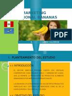 Plan Marketing HOLANDA